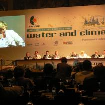 International Environmental Policy Division